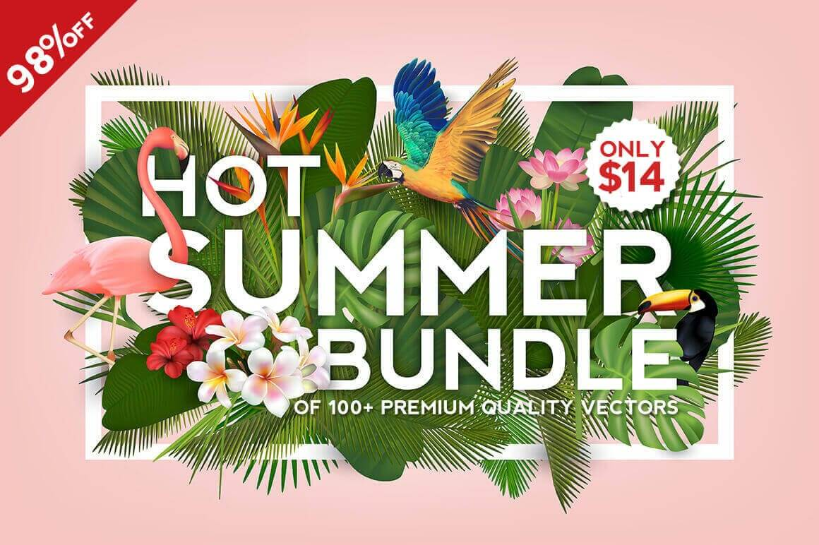 Hot Summer Bundle of 100+ Premium Quality Vectors - only $14!