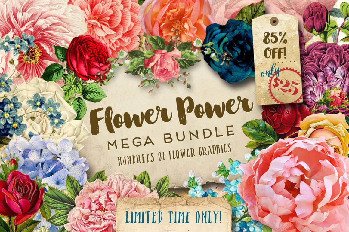 BUNDLE: Gorgeous Flower Graphics - only $25!