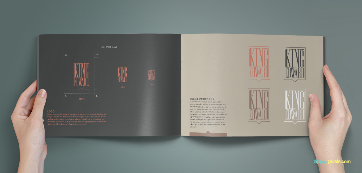 07 Brand Book 2 Logo Color Variations