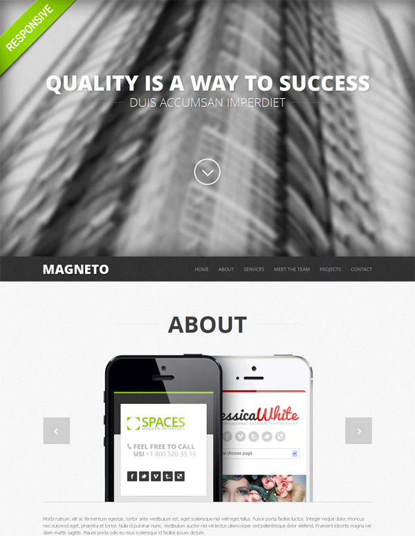 20 One Page Responsive Templates with Parallax Effect only $19!