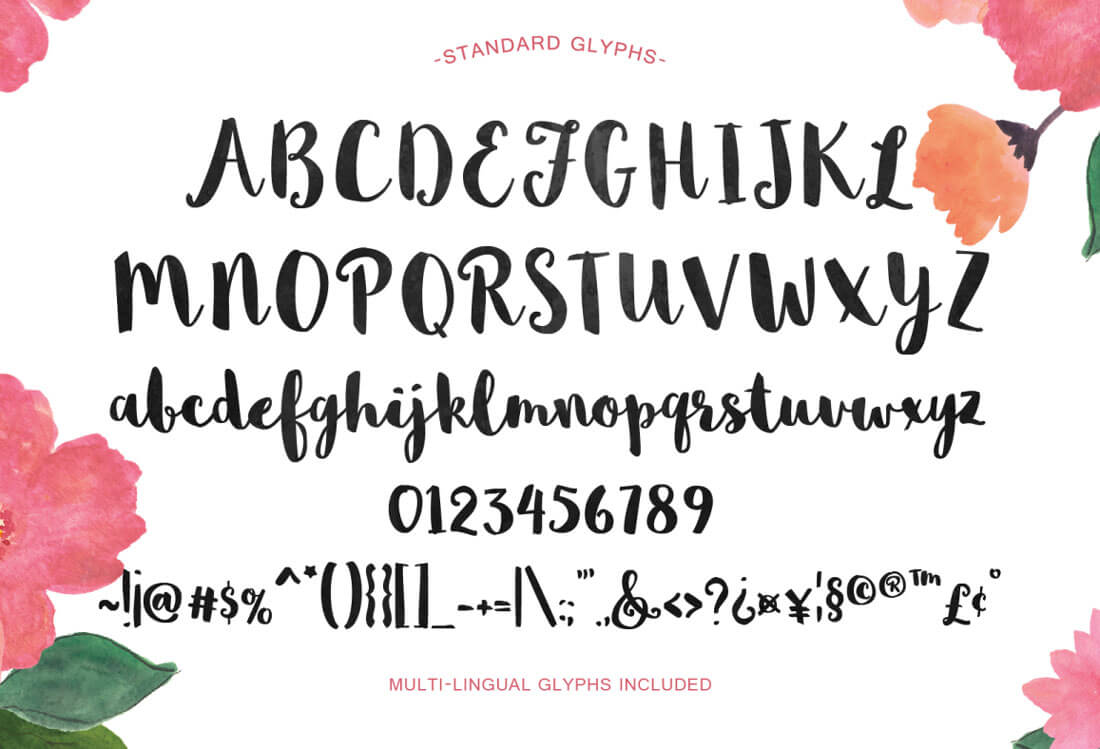 Decorated Lettering Ebook Free