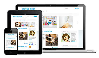 SimplyWP: 10 Professional Responsive WordPress Themes