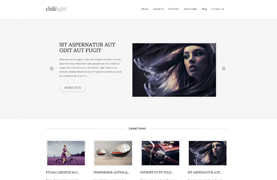 30+ WordPress Themes for only $19