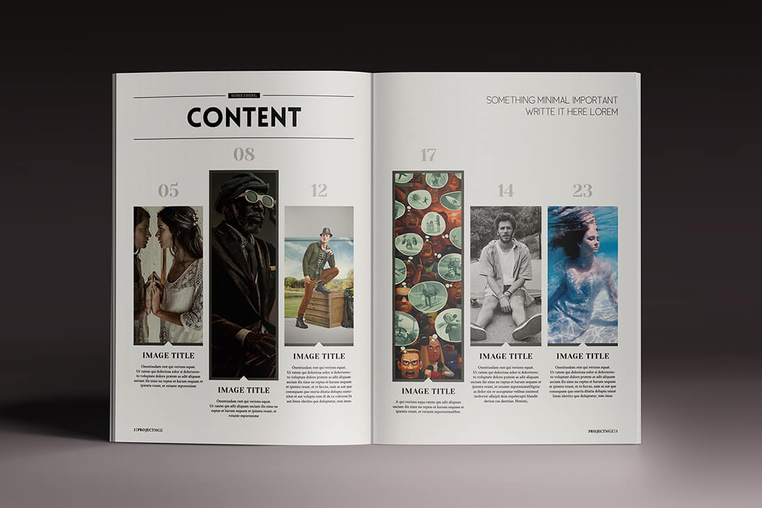 LAST CHANCE: 15 InDesign Magazine & Brochure Templates - only $24 ...