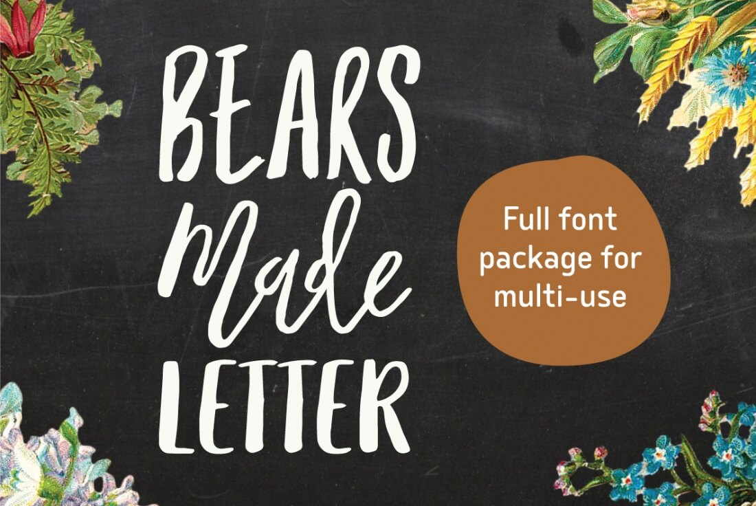 Modern calligraphy font families individual typefaces