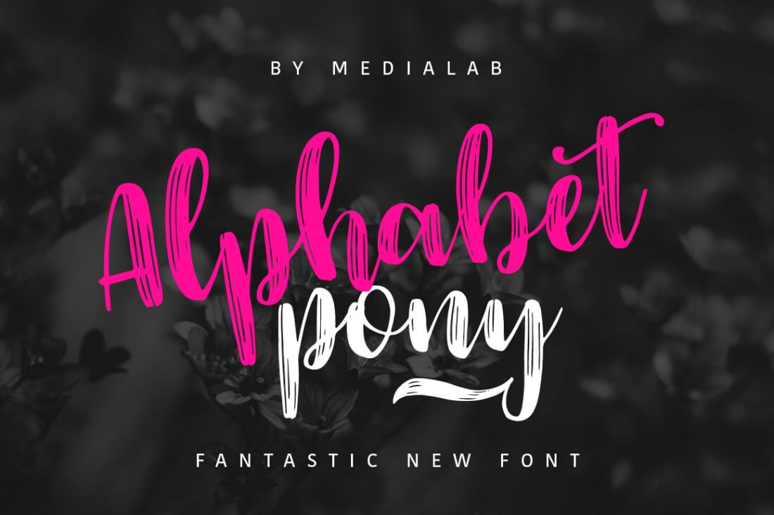 Download 109 Professional, Premium Fonts with Extended License ...