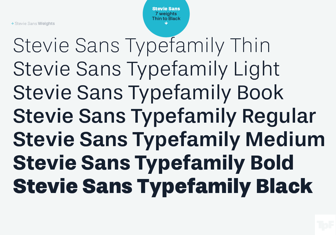 LAST CHANCE: Stevie Sans - a Neo Grotesque Font Family of 7
