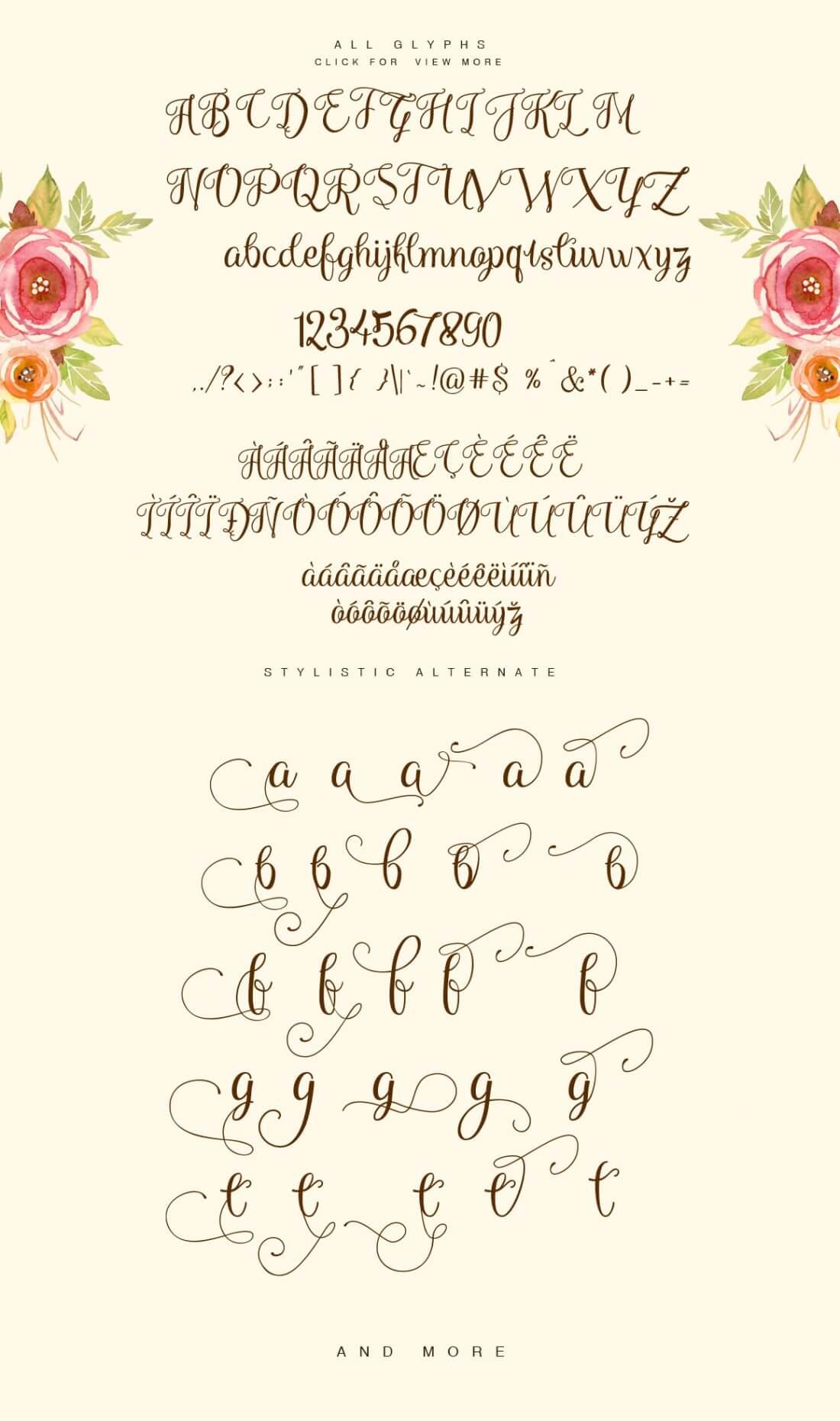 Superb Fonts Bundle Of 7 Script Display Typefaces