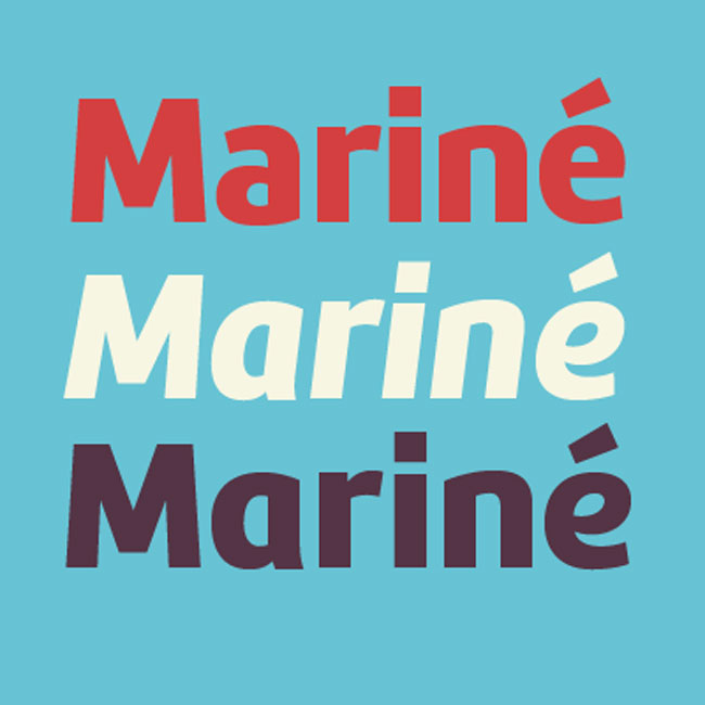 Mariné Extended Font Family (16 styles) - only $24! - MightyDeals
