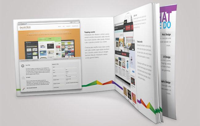 Colorful Portfolio Book